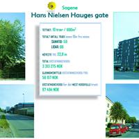 Hans Nielsen Hauges gate